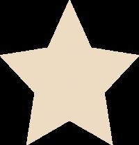 1 ster